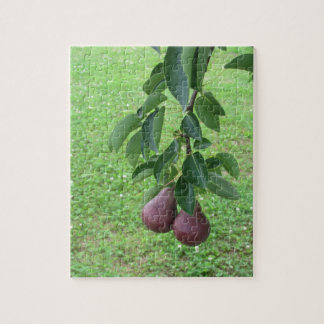 Red pears hanging on a growing pear tree jigsaw puzzle