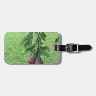 Red pears hanging on a growing pear tree luggage tag