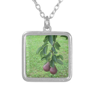 Red pears hanging on a growing pear tree silver plated necklace