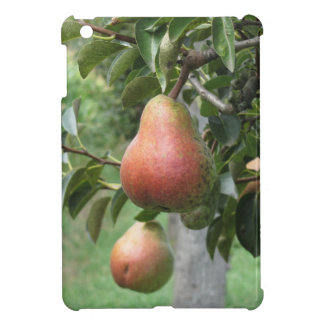Red pears hanging on the tree . Tuscany, Italy iPad Mini Covers