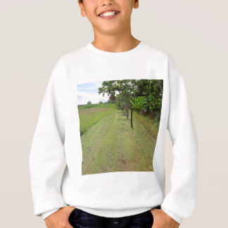 Red pears on tree branches sweatshirt
