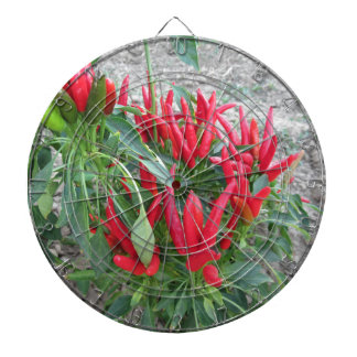 Red peppers hanging on the plant dartboard