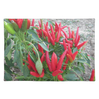 Red peppers hanging on the plant placemat