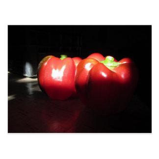 Red peppers illuminated by sunshine in the dark postcard