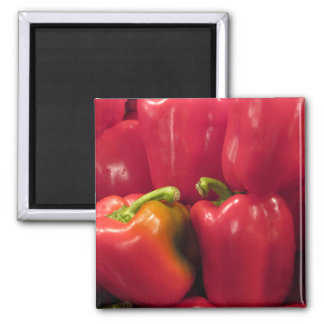 Red Peppers... Magnet