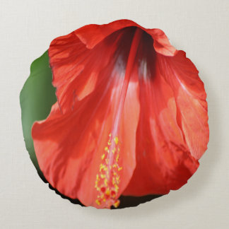 Red Petal and Anther with Pistil of Hibiscus Flowe Round Pillow