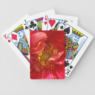 red petals bicycle playing cards