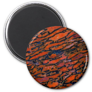 Red Petrified dinosaur bone Magnet