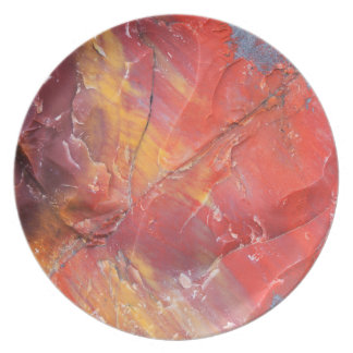 Red Petrified wood detail, Arizona Plate