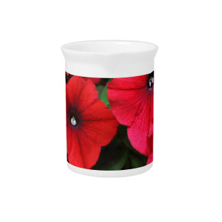 Red petunia flowers pitcher