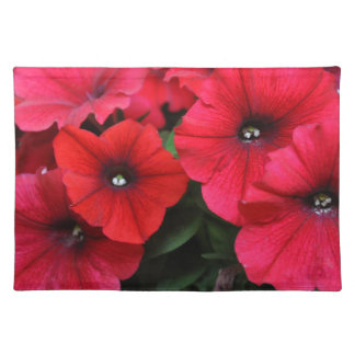 Red petunia flowers place mats