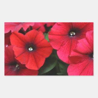 Red petunia flowers sticker
