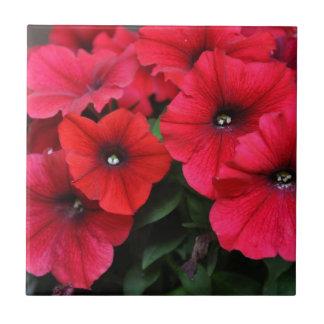 Red petunia flowers tile