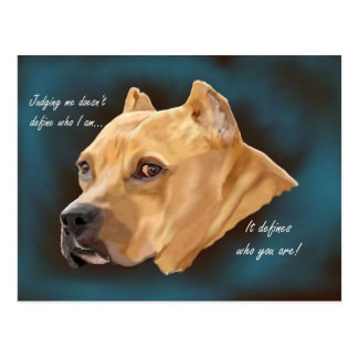 Red Pitbull Judging Me Postcard