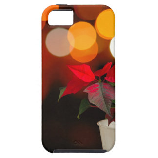 Red Poinsettia flower Case For The iPhone 5