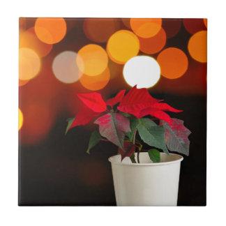 Red Poinsettia flower Tile