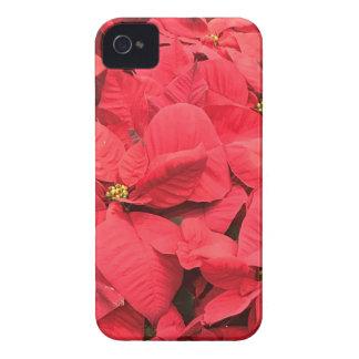 Red  Poinsettia iPhone 4 Cases