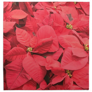 Red  Poinsettia Napkin