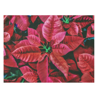 Red Poinsettia Plant Up Close Print Tablecloth