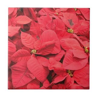 Red  Poinsettia Tile