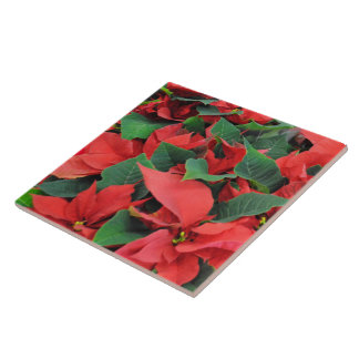 Red Poinsettias Ceramic Tiles