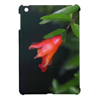 Red pomegranate flower (Punica granatum) on a tree Case For The iPad Mini