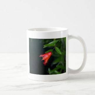 Red pomegranate flower (Punica granatum) on a tree Coffee Mug
