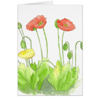 Red Poppies Blank Note Card Watercolor Wildflower