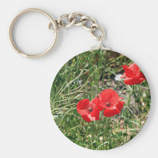 Red poppies on El Camino Basic Round Button Keychain