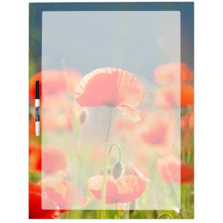 Red Poppies Poppy Flowers Blue Sky Dry Erase Board