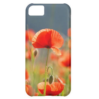 Red Poppies Poppy Flowers Blue Sky iPhone 5C Cases