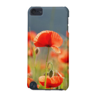 Red Poppies Poppy Flowers Blue Sky iPod Touch (5th Generation) Cases