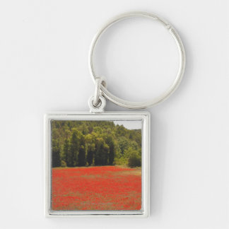Red poppies spring Provence France Silver-Colored Square Keychain