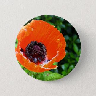 Red Poppy 2 Inch Round Button