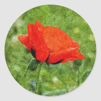Red Poppy Classic Round Sticker