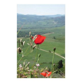 Red poppy flower in Tuscany countryside Custom Stationery