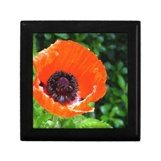 Red Poppy Gift Box