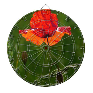 Red poppy in summer 02 dartboard