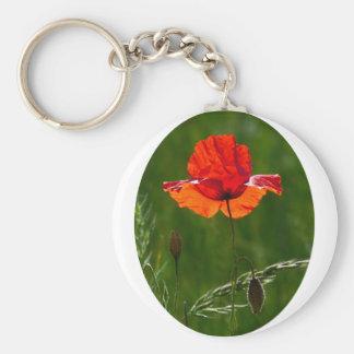 Red poppy in summer 02 keychain