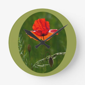 Red poppy in summer 02 round clock