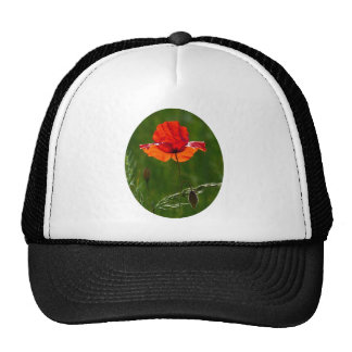 Red poppy in summer 02 trucker hat