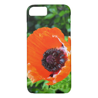 Red Poppy iPhone 8/7 Case