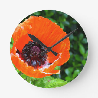 Red Poppy Round Clock