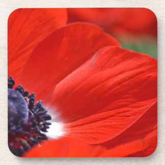 Red Poppy Spring Floral Coaster