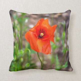 Red poppy throw cushion