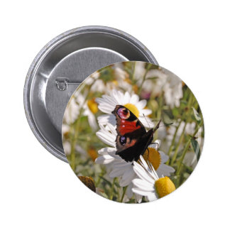 Red Purple Black Butterfly on Daisies Button