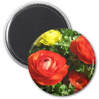 Red Ranunculus Flower Magnet