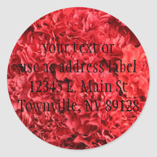 Red Red Carnations Classic Round Sticker