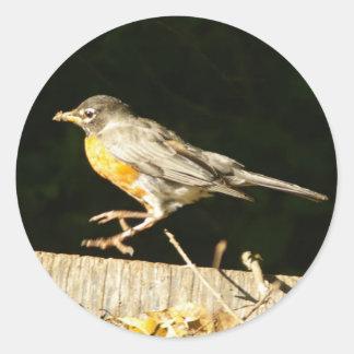 Red Robin Bobbin Classic Round Sticker