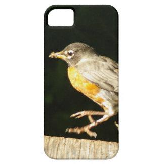Red Robin Bobbin iPhone 5 Cases